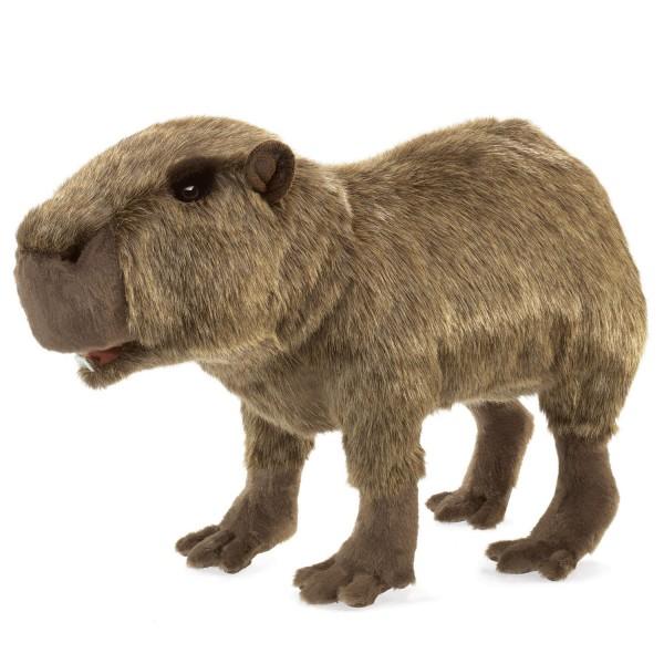 Wasserschwein / Capybara