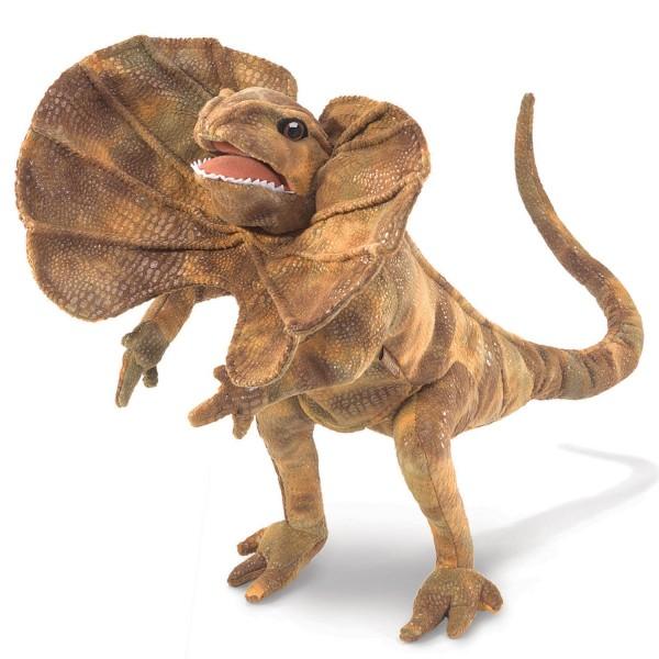 Kragenechse / Frilled Lizard