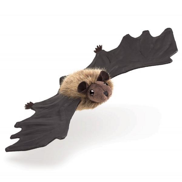 Kleine Fledermaus / Little Brown Bat