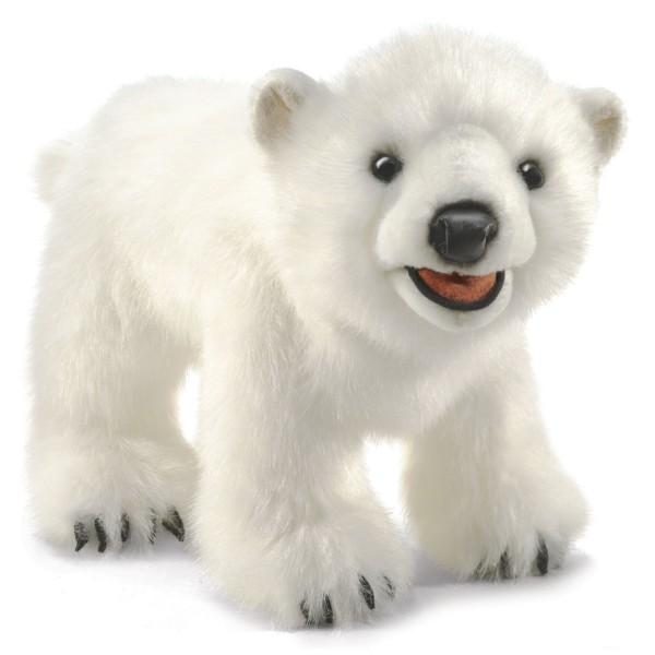 Eisbärenjunges / Polar Bear Cub