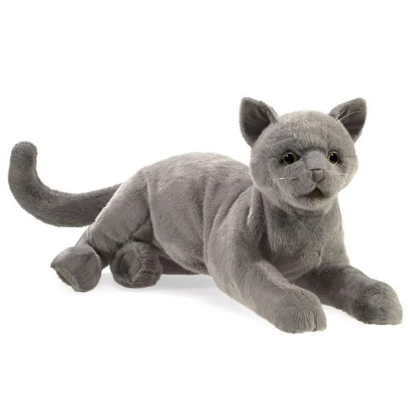 Schnurrende Katze / Purring Cat