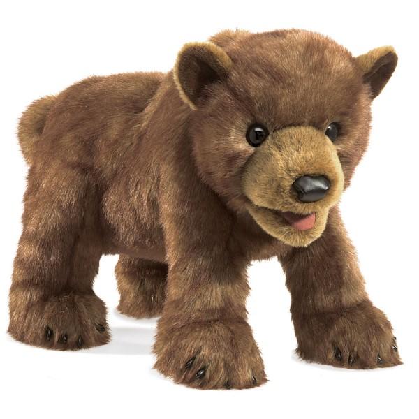 Baby Braunbär / Brown Bear Cub