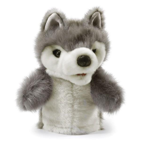 kleiner Wolf / Little Wolf