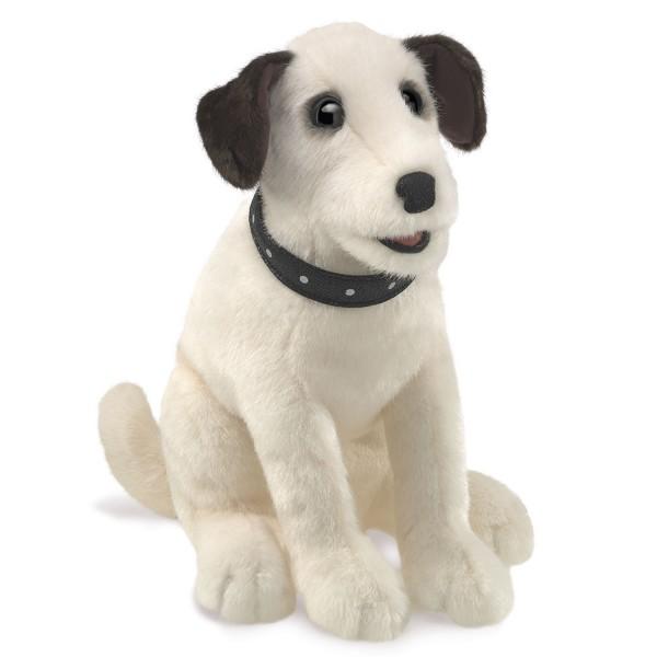 Terrier, sitzend / Sitting Terrier