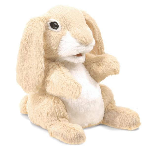 Hase, kann schnüffeln / Sniffing Rabbit