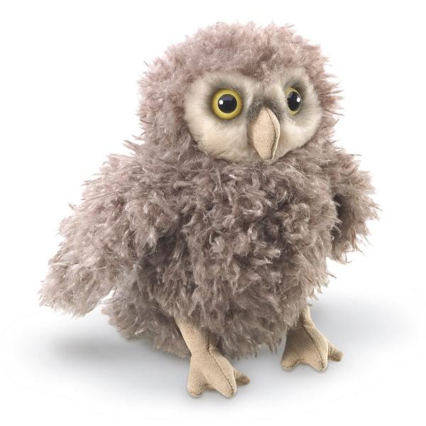 Eulenküken / Owlet