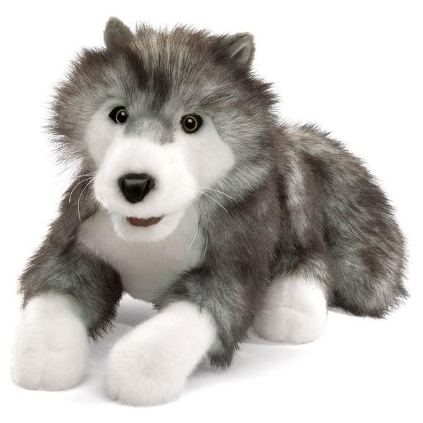 Polarwolf / Timber Wolf