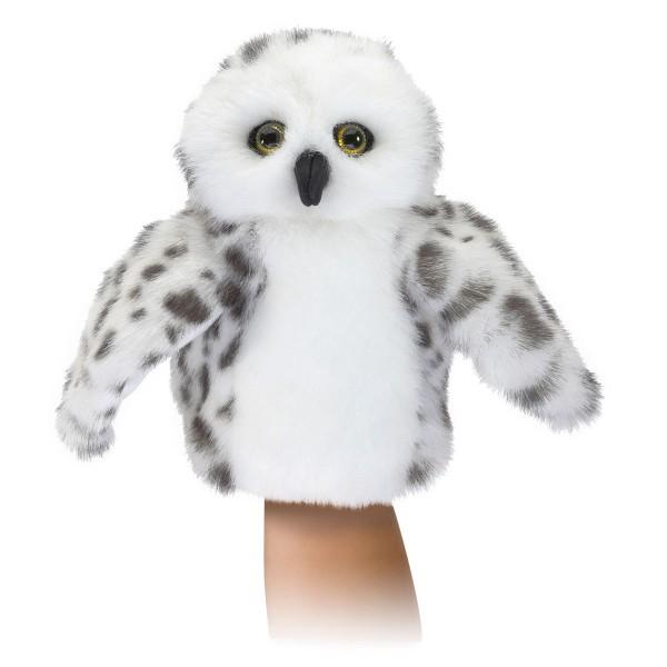 Kleine Schneeeule / Little Snowy Owl