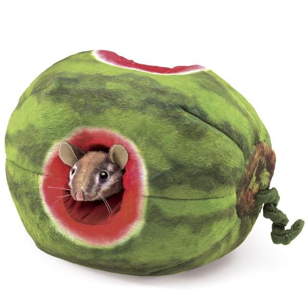 Streifenhörnchen in Melone / Chipmunk in Watermelon