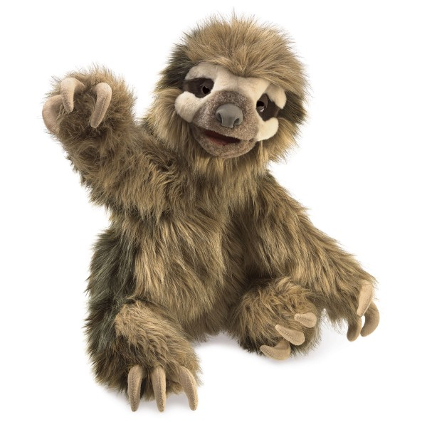 Dreifinger-Faultier / Three-Toed Sloth