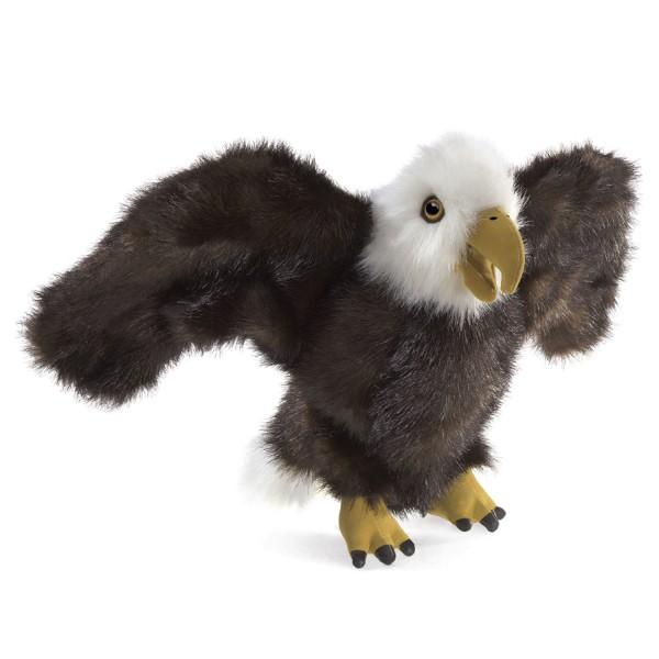 Kleiner Adler / Small Eagle