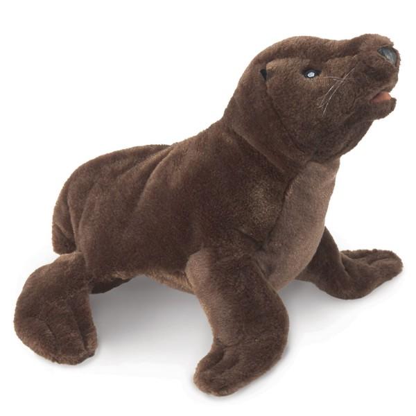 Seelöwenjunges / Sea Lion Cub