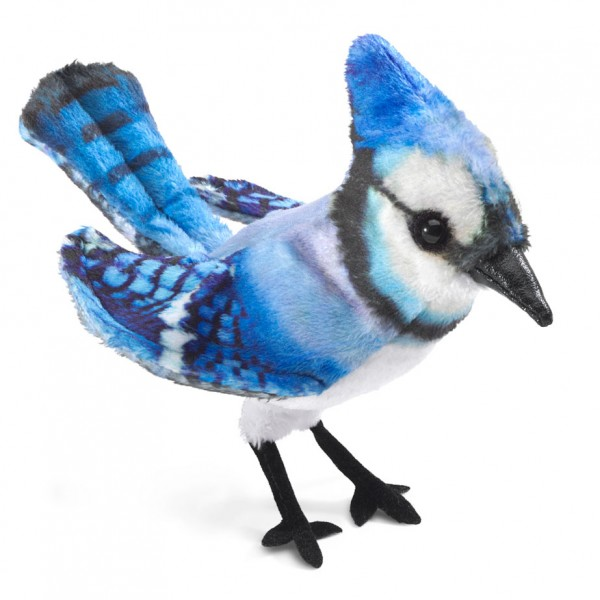 Mini Blauhäher/ Mini Blue Jay