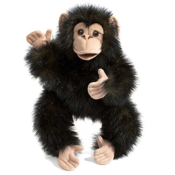 Baby Schimpanse / Baby Chimpanzee