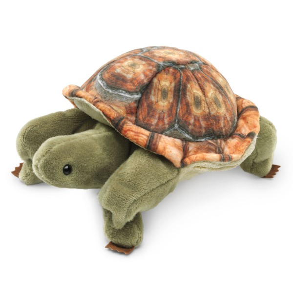 Mini Landschildkröte / Mini Tortoise