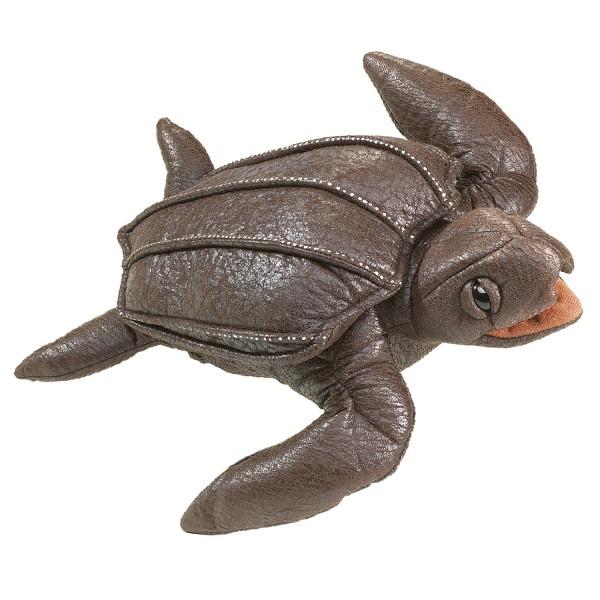 Lederschildkröte / Leatherback Sea Turtle